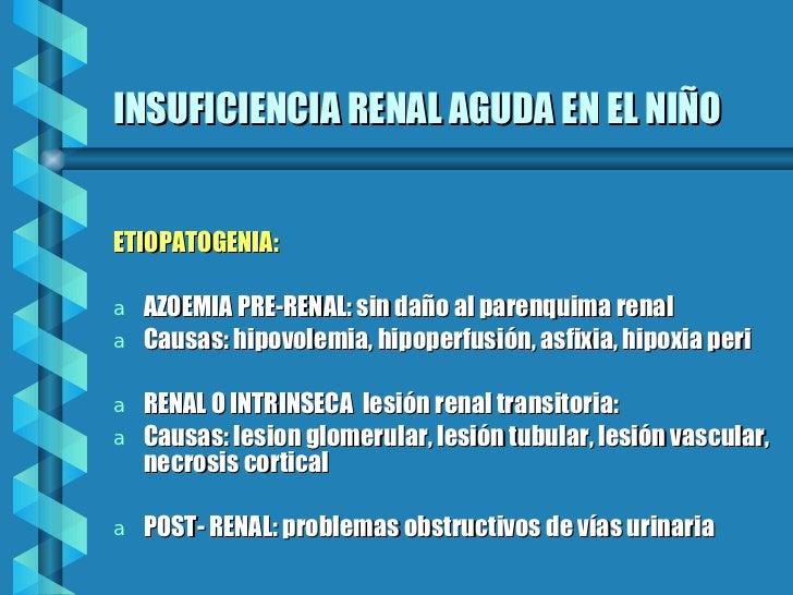 INSUFICIENCIA RENAL AGUDA EN EL NIÑO <ul><li>ETIOPATOGENIA: </li></ul><ul><li>AZOEMIA PRE-RENAL: sin daño al parenquima re...