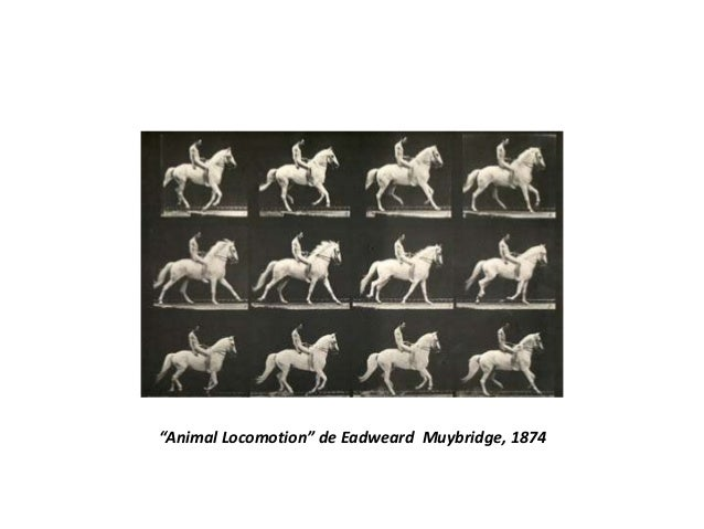 """Animal Locomotion"" de Eadweard Muybridge, 1874"