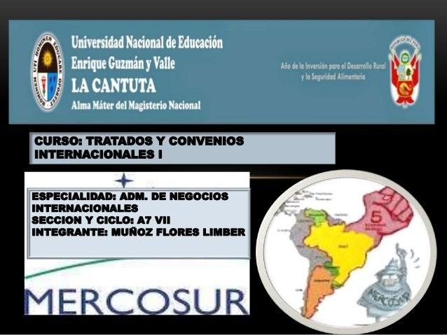 CURSO: TRATADOS Y CONVENIOS INTERNACIONALES I ESPECIALIDAD: ADM. DE NEGOCIOS INTERNACIONALES SECCION Y CICLO: A7 VII INTEG...