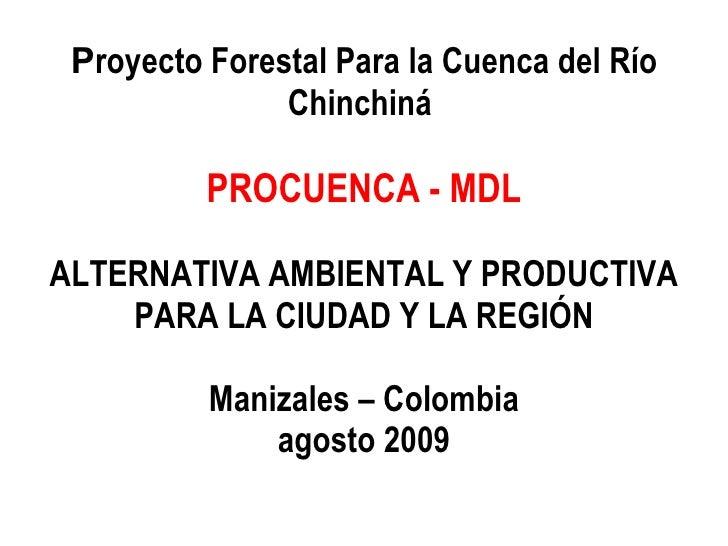 P royecto Forestal Para la Cuenca del Río Chinchiná  PROCUENCA - MDL ALTERNATIVA AMBIENTAL Y PRODUCTIVA PARA LA CIUDAD Y L...