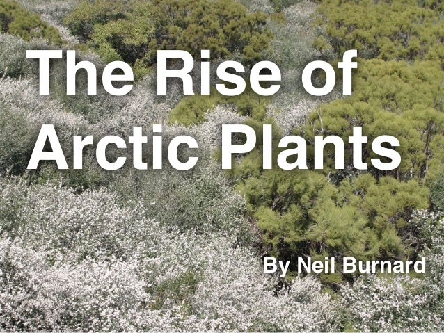 The Rise of Arctic Plants By Neil Burnard