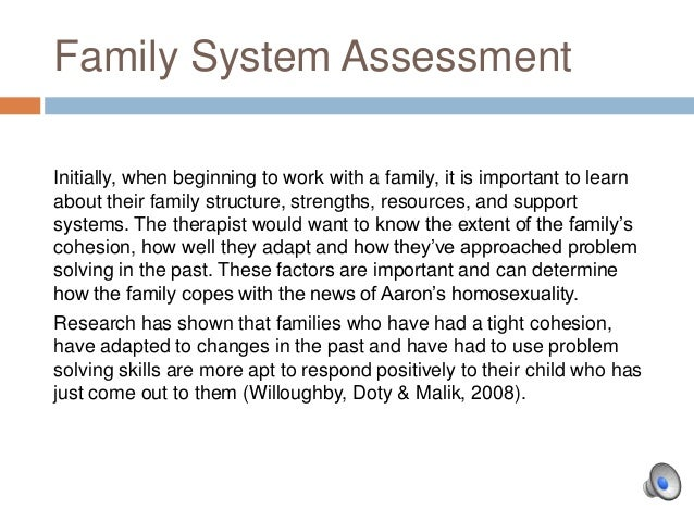 case example of family system therapy
