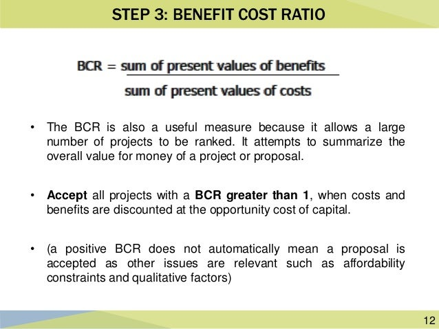 Cost Benefit Analysis In Public Project Appraisal Ppac