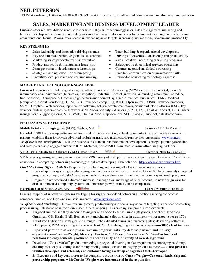 Resume Vice President Of Sales Sales Marketing Resume Examples  Sales Marketing Resume