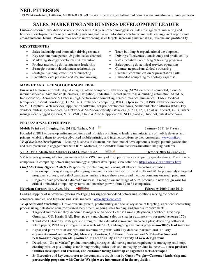 Resume Vice President Of Sales Sales Marketing Resume Examples  Sales And Marketing Resume