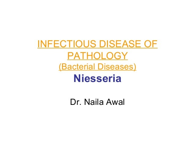 INFECTIOUS DISEASE OF PATHOLOGY (Bacterial Diseases)  Niesseria Dr. Naila Awal