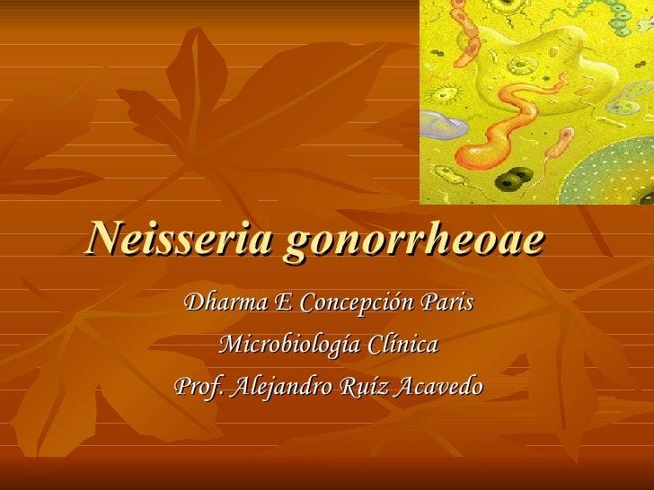 Neisseria gonorrheoae   Dharma E Concepción Paris Microbiología Clínica Prof. Alejandro Ruíz Acavedo