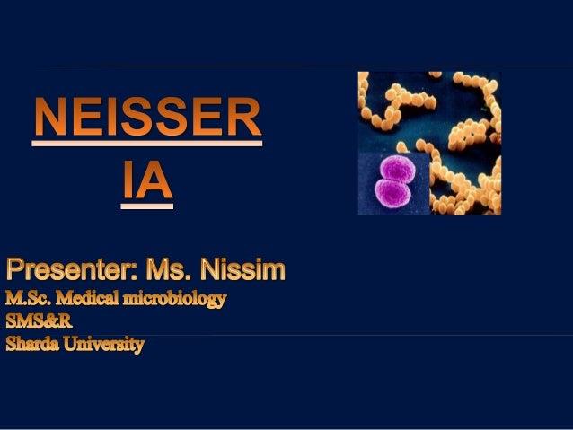 CLASSIFICATION Kingdom: Bacteria Phylum: Proteobacteriacea Class: Betaproteobacteria Order: Neisseriales Family: Neisseria...