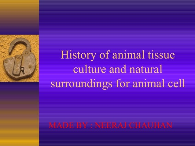 History of animal tissue     culture and naturalsurroundings for animal cellMADE BY : NEERAJ CHAUHAN