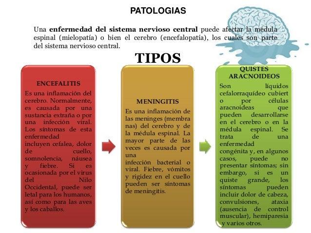 PATOLOGIAS  Una enfermedad del sistema nervioso central puede afectar la médula espinal (mielopatía) o bien el cerebro (en...