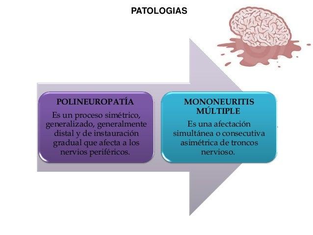 PATOLOGIAS  POLINEUROPATÍA Es un proceso simétrico, generalizado, generalmente distal y de instauración gradual que afecta...