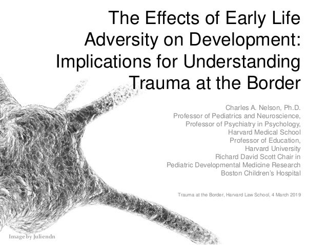 Image by Juliendn The Effects of Early Life Adversity on Development: Implications for Understanding Trauma at the Border ...