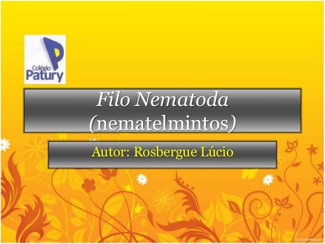 Filo Nematoda (nematelmintos)<br />Autor: Rosbergue Lúcio<br />