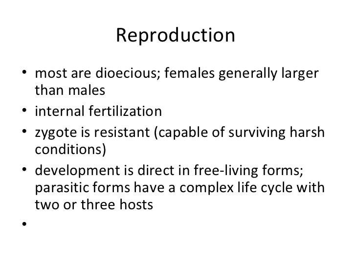 Do nematodes reproduce asexually