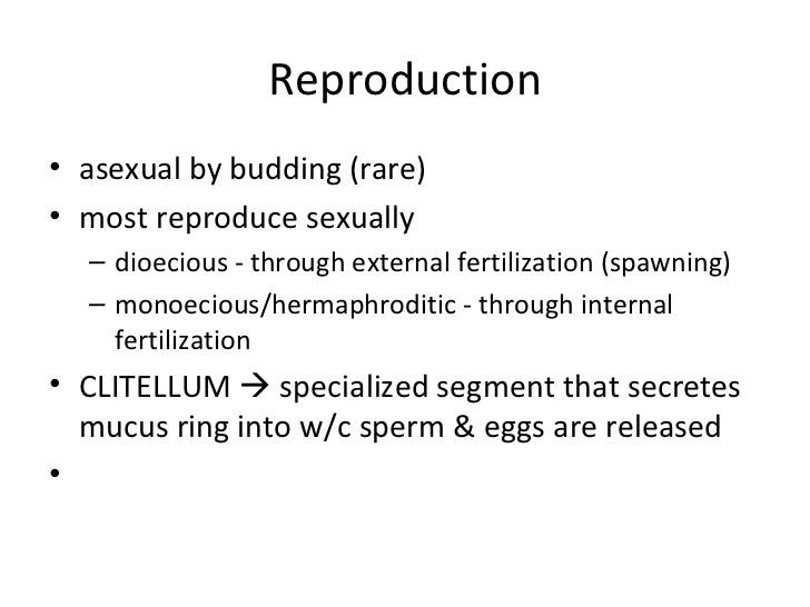 Nematoda reproduction asexual and sexual reproduction