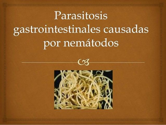 Ascariasis  Agente causal :  Ascaris lumbricoides es el nemátodo (gusano cilíndrico) más grande que parasita al ser huma...