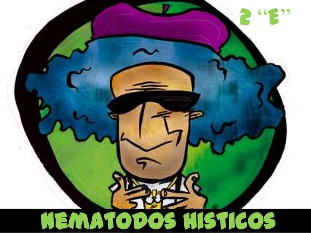 """2 """"E""""Nematodos Histicos"""
