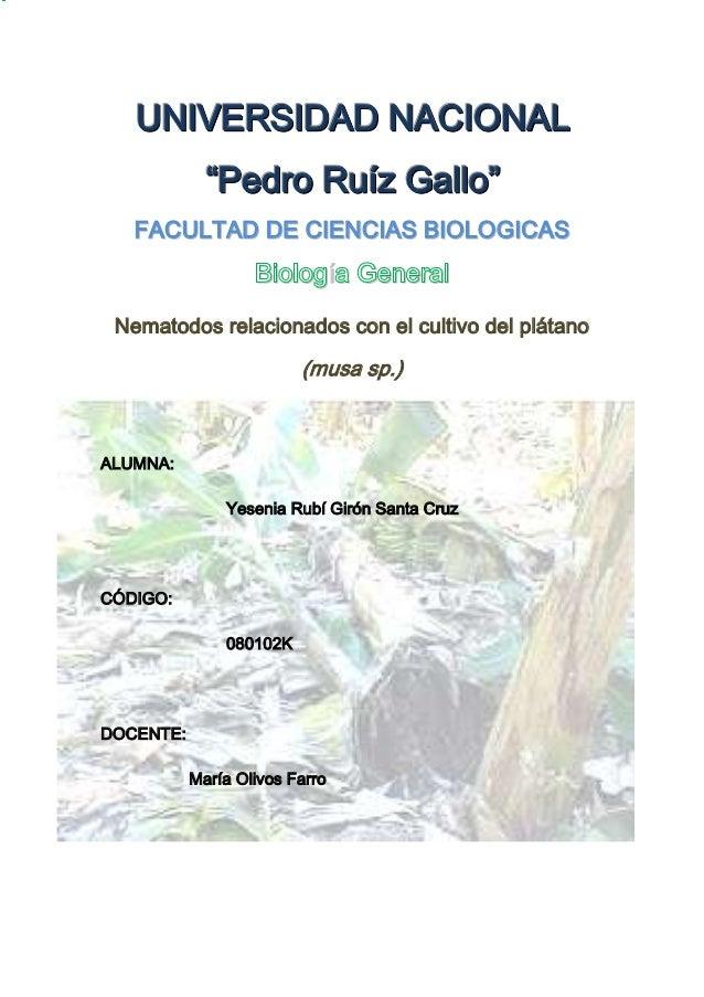 """UNIVERSIDAD NACIONAL             """"Pedro Ruíz Gallo""""   FACULTAD DE CIENCIAS BIOLOGICAS                   Biología General N..."""