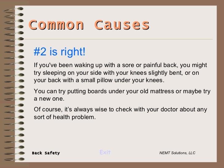 Nemt Solutions Back Safety Presentation 2 4 08