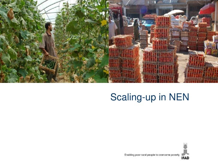 Scaling-up in NEN