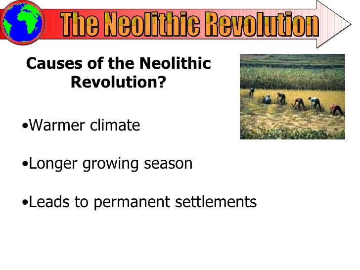 neolithic agricultural revolution The economy of the neolithic period was based on agriculture and animal  husbandry and aimed at increasing and manipulating production the transition  from.