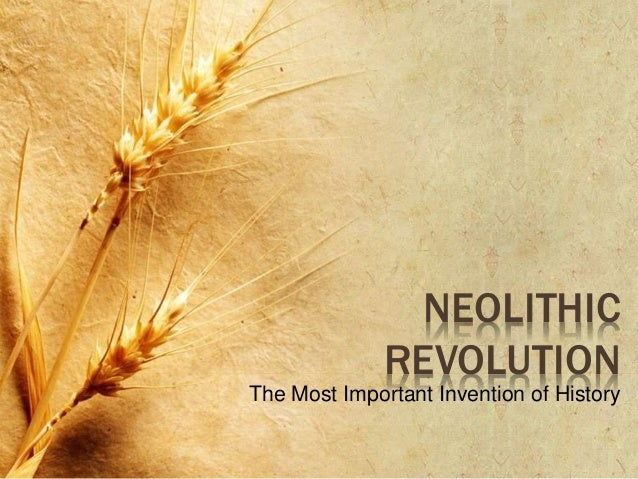 what is the neolithic revolution and why is it important