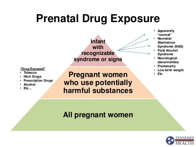 Neonatal Abstinence Syndrome - Tennessee's Epidemic and The State's R…