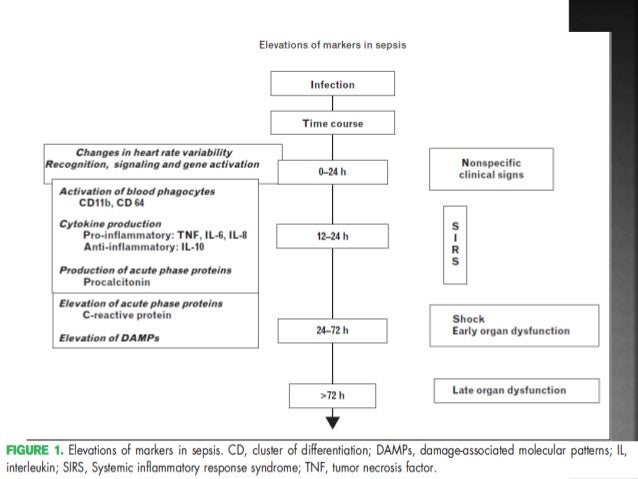 interleukin 6 levels in early diagnosis of neonatal sepsis The role of sample collection timing on interleukin-6  diagnosis of neonatal early-onset sepsis were  il-6 levels and sample collection timing.