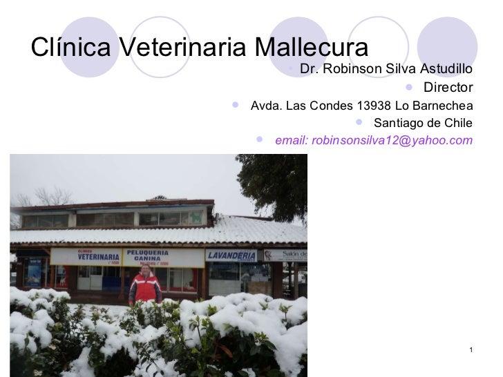 Clínica Veterinaria Mallecura <ul><ul><ul><ul><ul><li>Dr. Robinson Silva Astudillo </li></ul></ul></ul></ul></ul><ul><li>D...