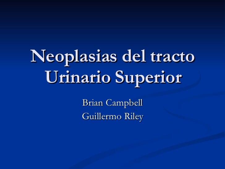 Neoplasias del tracto Urinario Superior Brian Campbell Guillermo Riley