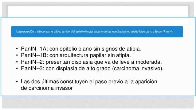 • PanIN--1A: con epitelio plano sin signos de atipia. • PanIN--1B: con arquitectura papilar sin atipia. • PanIN--2: presen...