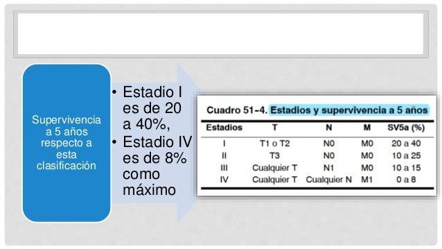 • Estadio I es de 20 a 40%, • Estadio IV es de 8% como máximo Supervivencia a 5 años respecto a esta clasificación