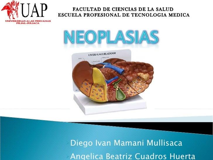 <ul><li>Diego Ivan Mamani Mullisaca </li></ul><ul><li>Angelica Beatriz  Cuadros Huerta </li></ul>FACULTAD DE CIENCIAS DE L...