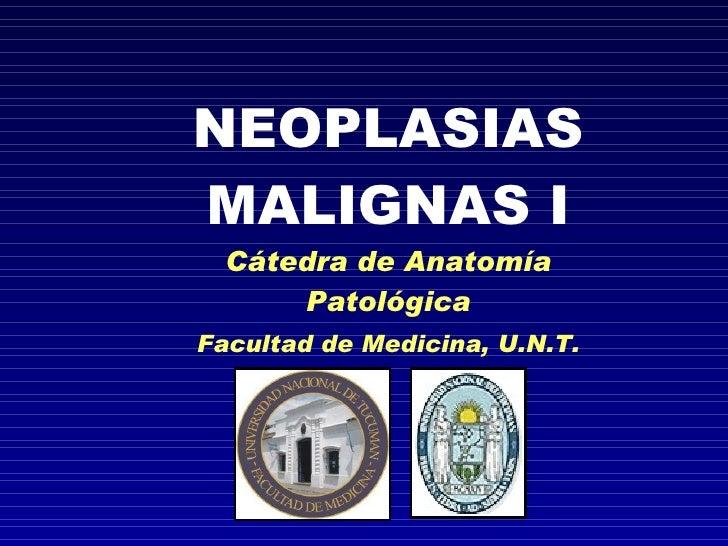Neoplasias malignas I