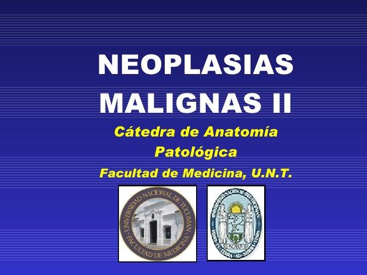 NEOPLASIAS MALIGNAS II Cátedra de Anatomía Patológica Facultad de Medicina, U.N.T.