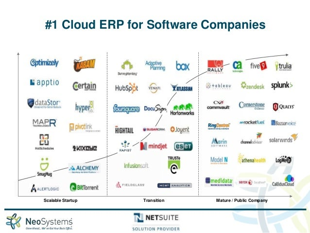 Netsuite For The Software Industry