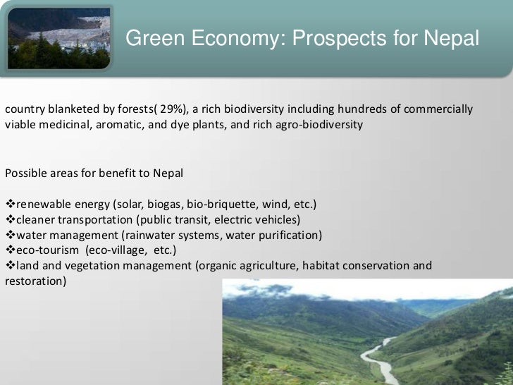 thesis on green economy Green growth and developing countries: a summary for policy  green growth is a matter of botheconomic  the informal economy is very large in many developing.