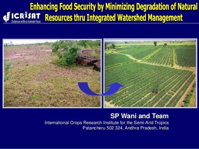 SP Wani and Team International Crops Research Institute for the Semi-Arid Tropics Patancheru 502 324, Andhra Pradesh, India