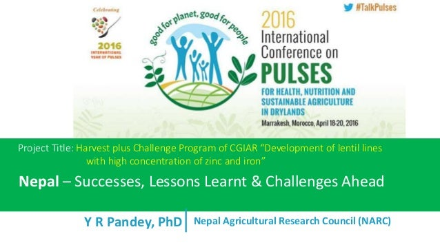 "Y R Pandey, PhD Project Title: Harvest plus Challenge Program of CGIAR ""Development of lentil lines with high concentratio..."