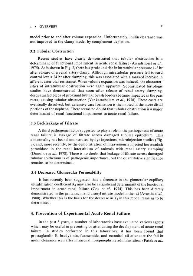 Nephrotoxicity essay literary essay guidelines