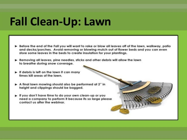 Noon turf care fall to winter lawn tree shrub and for Fall yard clean up checklist