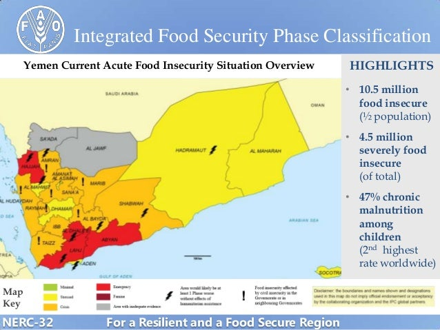 Yemen  Impact of the protracted crisis on food and nutrition securit