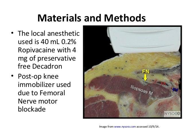 nerve block for hip arthrsocopy: rio de janeiro 2014, Muscles