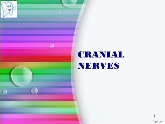 CRANIAL NERVES 1