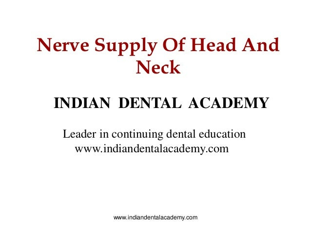 Nerve Supply Of Head And Neck INDIAN DENTAL ACADEMY Leader in continuing dental education www.indiandentalacademy.com www....
