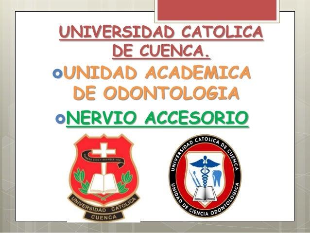 UNIVERSIDAD CATOLICA DE CUENCA. UNIDAD ACADEMICA DE ODONTOLOGIA NERVIO ACCESORIO