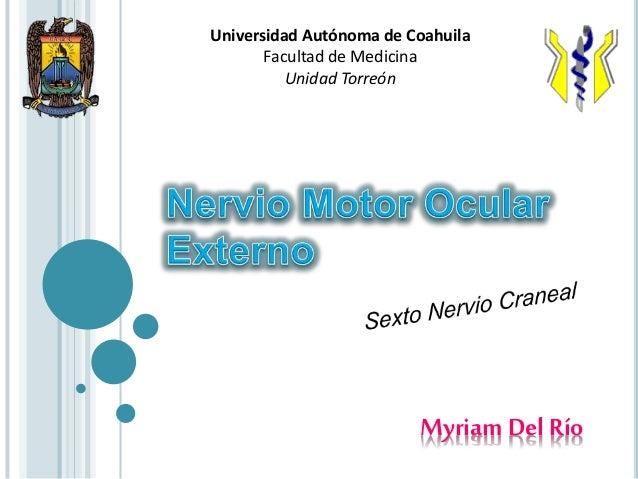 Myriam Del Río Universidad Autónoma de Coahuila Facultad de Medicina Unidad Torreón
