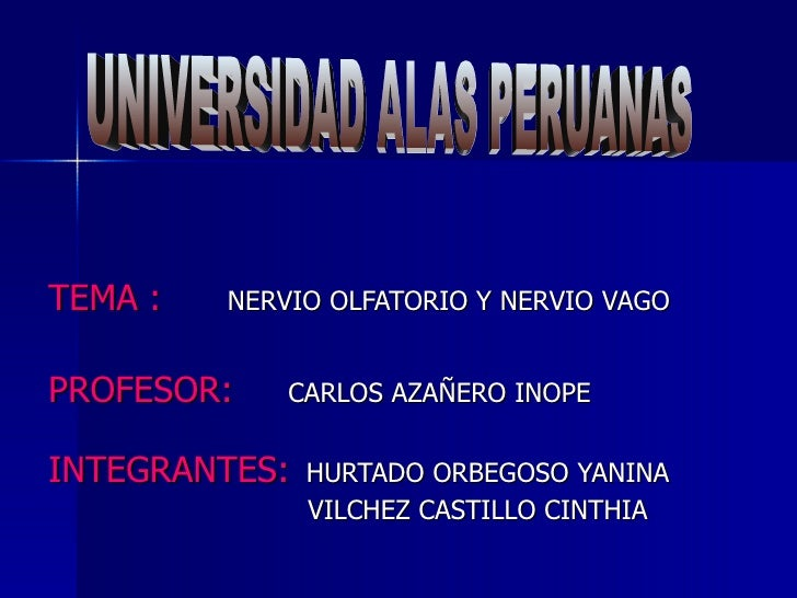 TEMA :   NERVIO OLFATORIO Y NERVIO VAGOPROFESOR:    CARLOS AZAÑERO INOPEINTEGRANTES:   HURTADO ORBEGOSO YANINA            ...