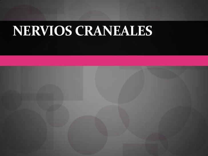 Nervios craneales<br />