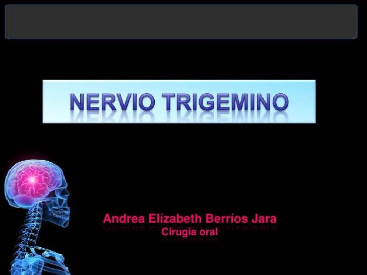 NERVIO TRIGEMINO <br />Andrea Elízabeth Berríos Jara<br />Cirugia oral <br />
